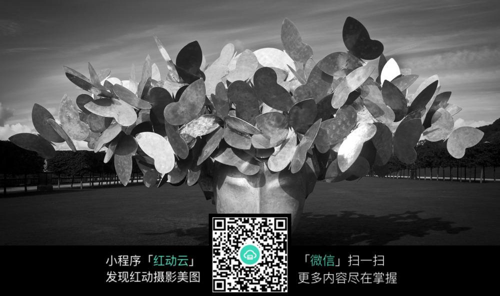 黑白花艺图片素材