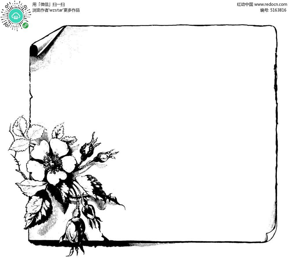 边角花朵绽放边框