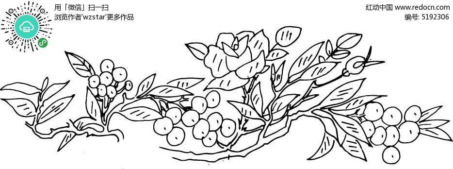 花朵果实图