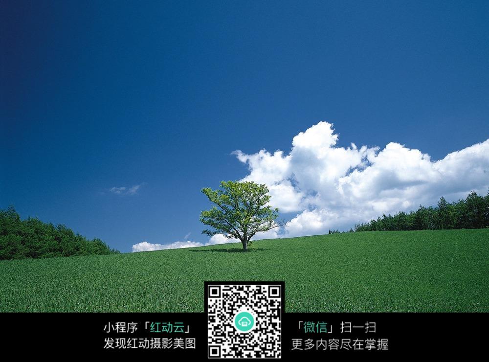 红动网提供花草树木精美素材免费下载,您当前访问素材主题是绿色的原野,编号是5195906,文件格式JPG,您下载的是一个压缩包文件,请解压后再使用看图软件打开,图片像素是2950*2094像素,素材大小 是2.09 MB,如果您喜欢本作品,请使用上方的分享功能,分享给您的朋友,可以给他们的设计工作带来便利。