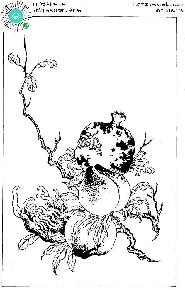 石榴手绘简笔画