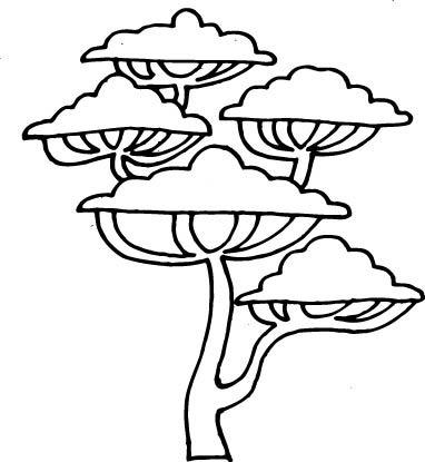 有没有松树的简笔画