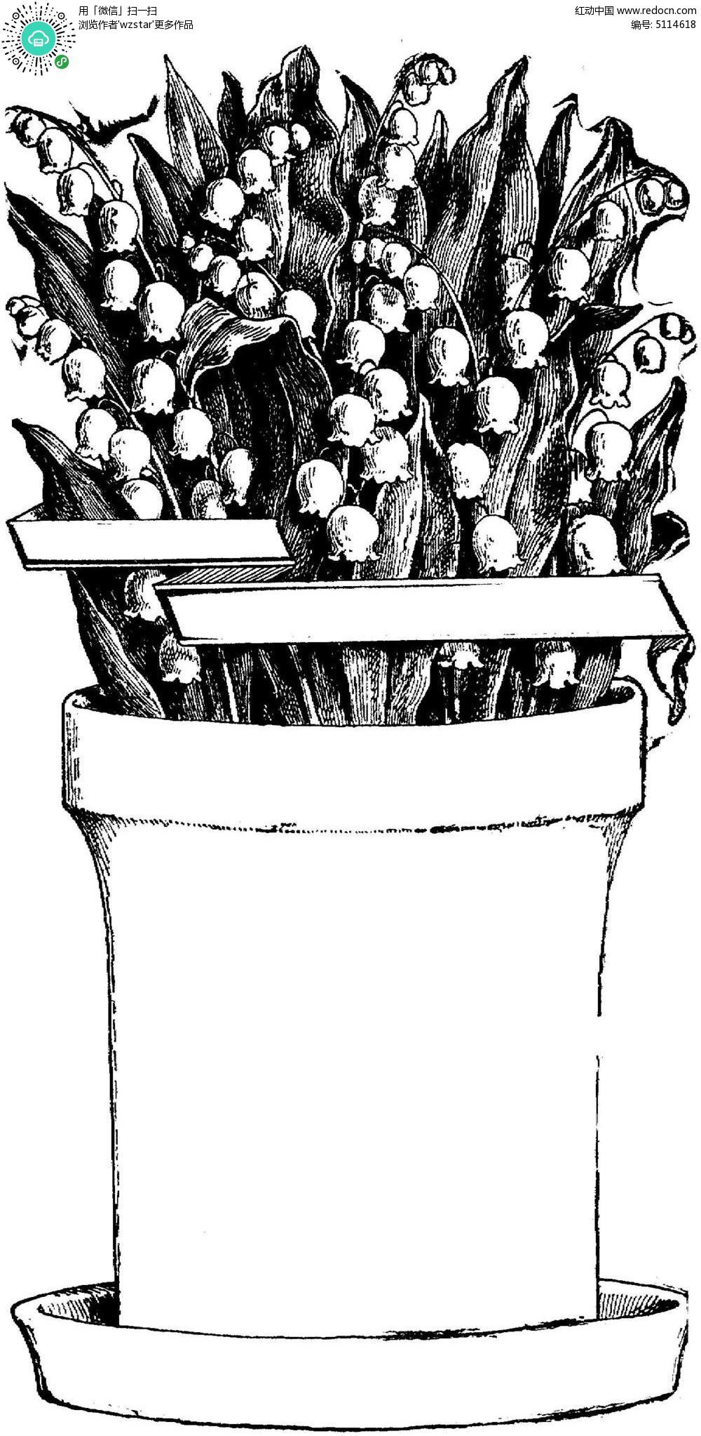 黑白花盆植物插图