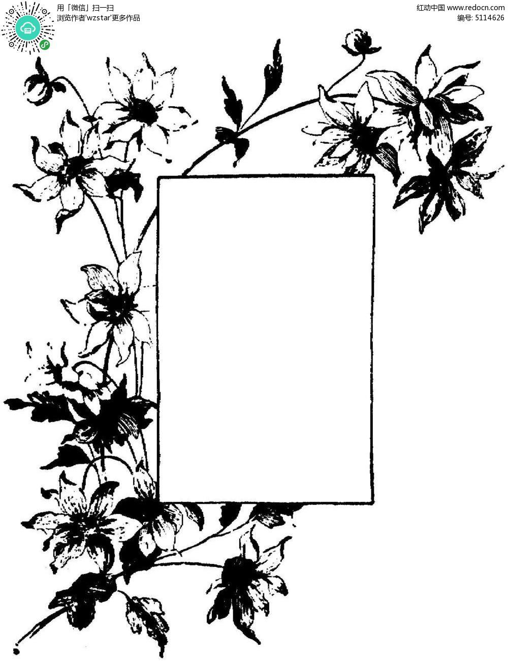 黑白植物花朵留白插图