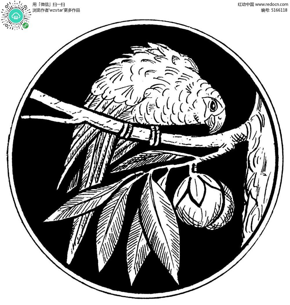 手绘站在树枝上的鹦鹉黑白圆形矢量图案