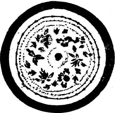 黑白树叶装饰花纹