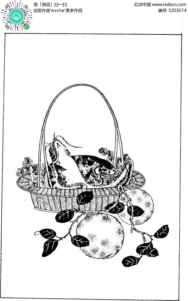 手绘黑白插画水果