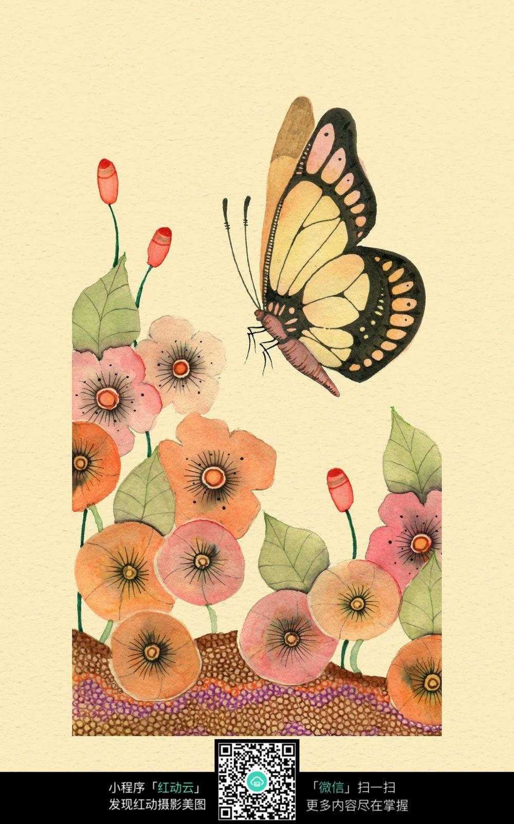 蝴蝶与花图片素材