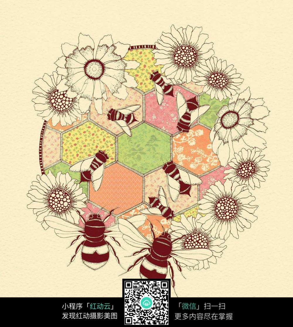 蜜蜂采蜜图片素材
