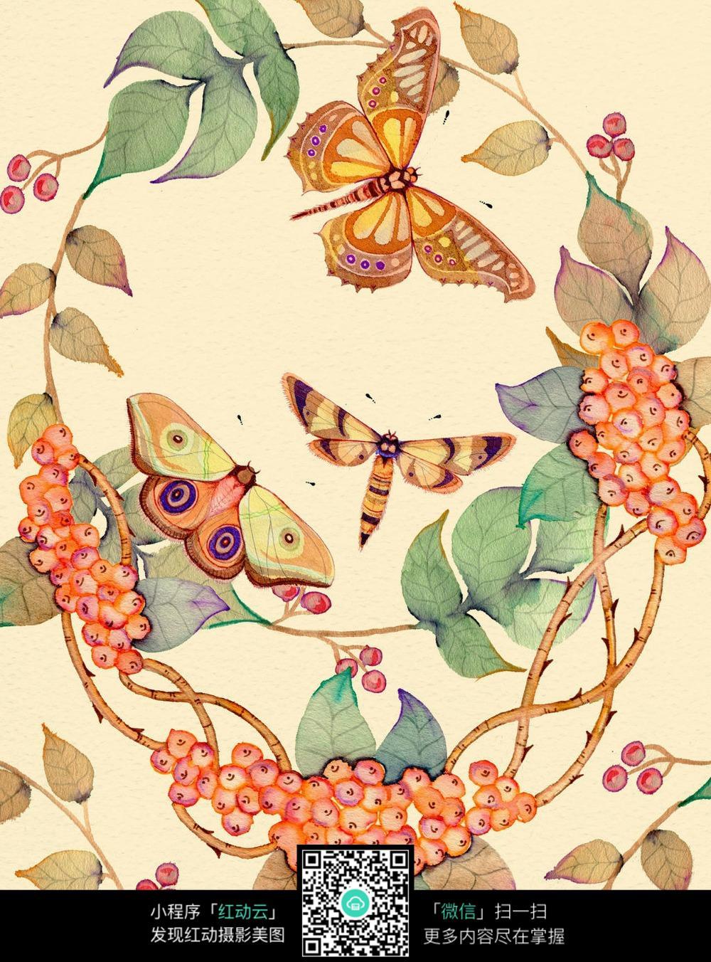 唯美手绘蝴蝶花瓣插画图片