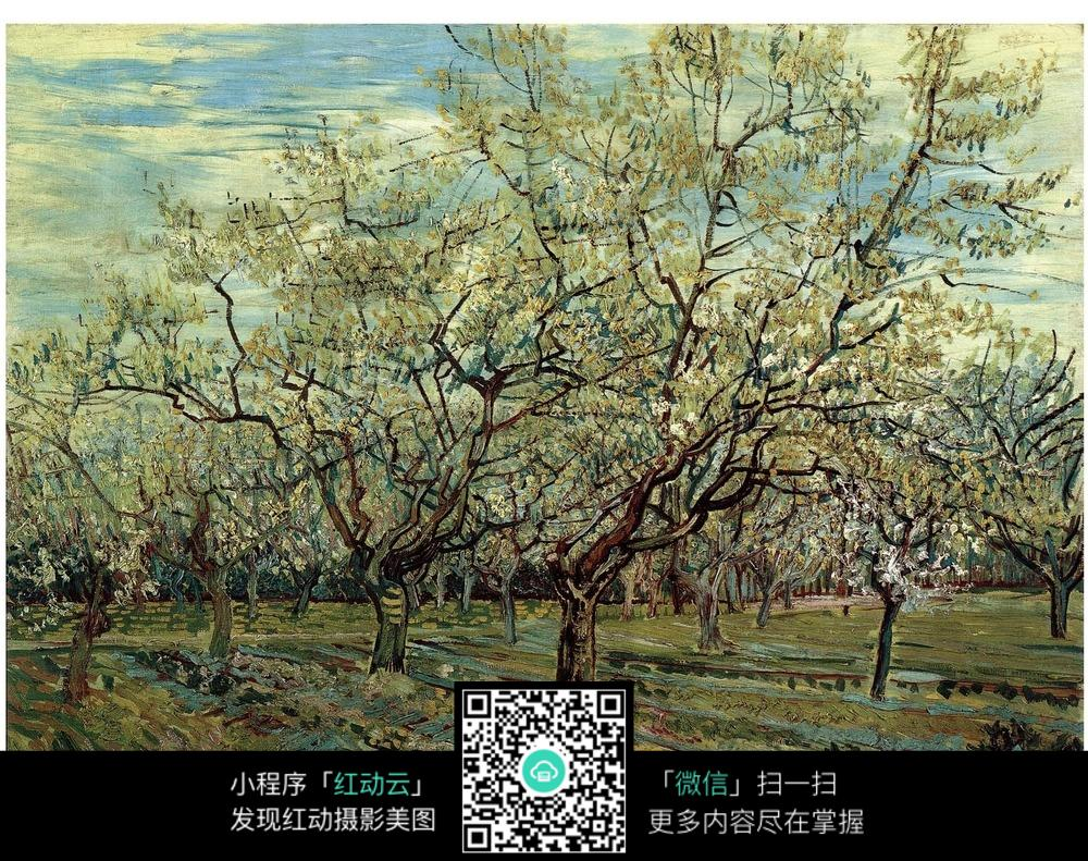 花树简笔画手绘