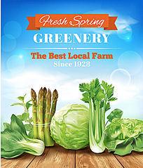 有机蔬菜海报矢量素材