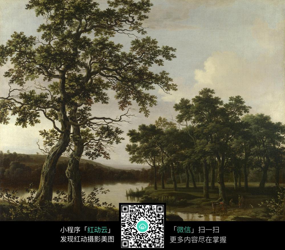 大树 茂盛 湖水