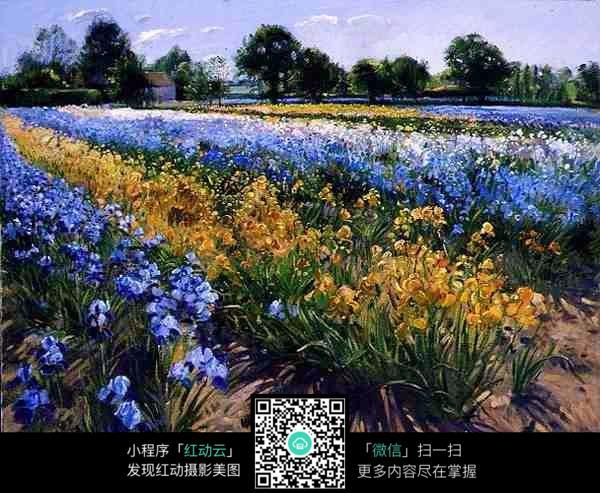 手绘花卉园