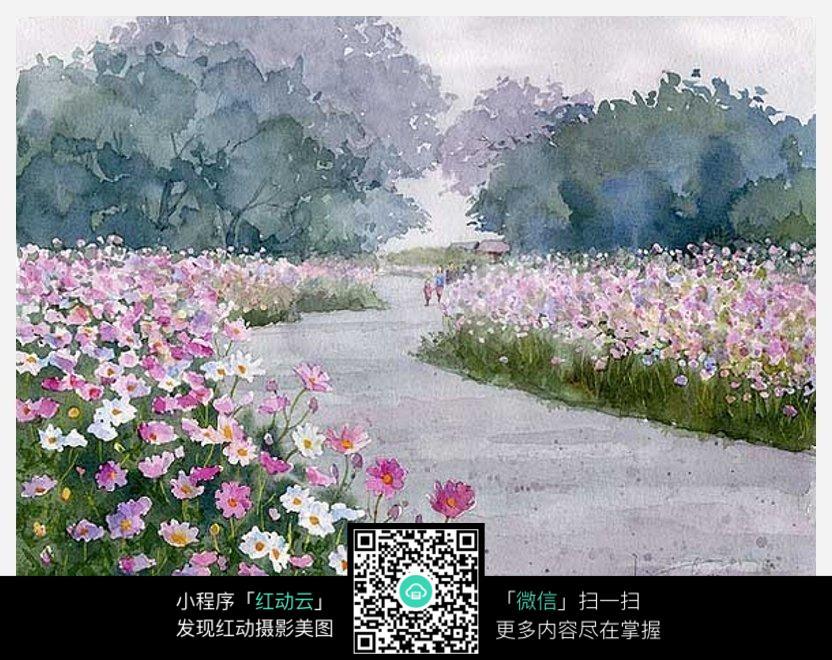 室内景观花手绘