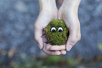 手中捧着的长眼睛的苔藓球