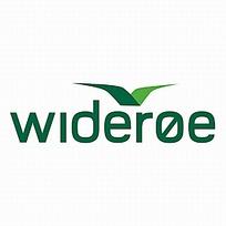 wideroe公司logo设计图片