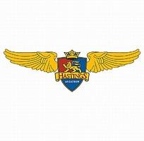 天使翅膀图案航空公司logo设计