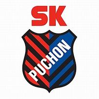 韩国富川球队logo设计