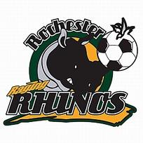 河马头像logo设计