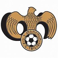 展翅鹰图案球队logo设计