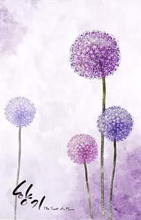 梦幻紫色花卉