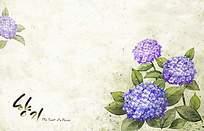 紫色花卉背景