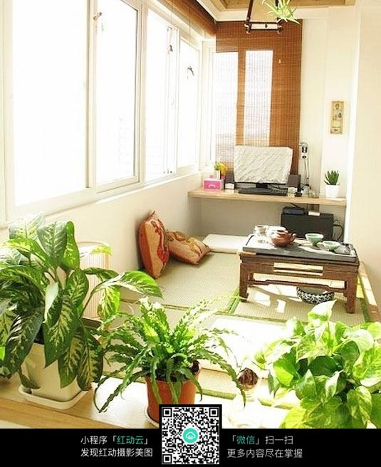 阳台盆栽_室内设计图片