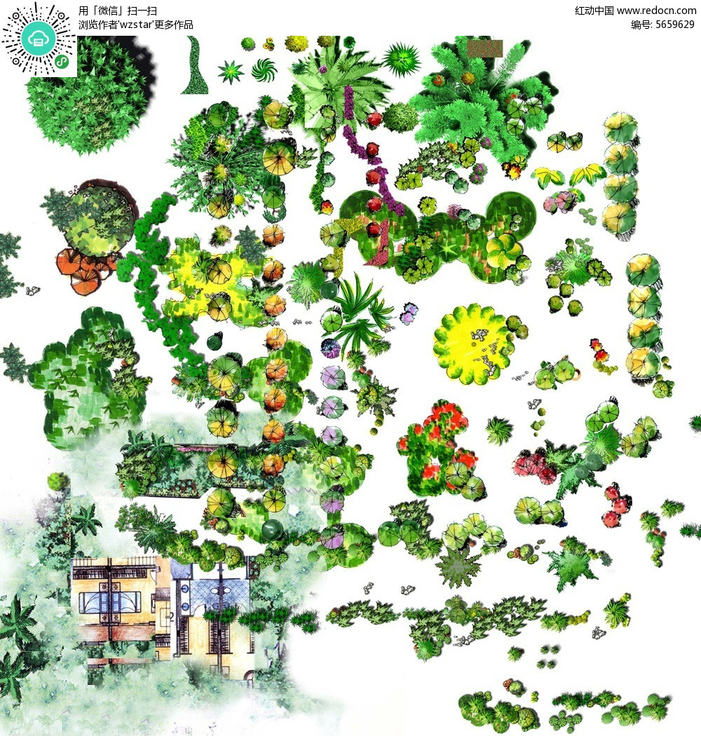 园林植物景观俯视图psd