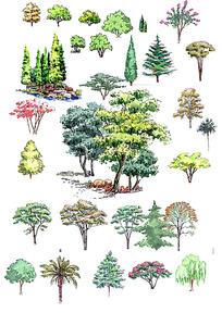 园林植物种植效果图PSD
