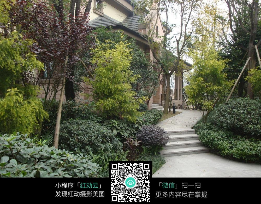公寓室外绿化景观图片
