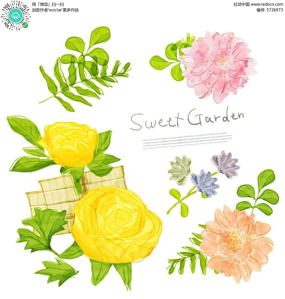 韩国手绘水彩花朵素材图片