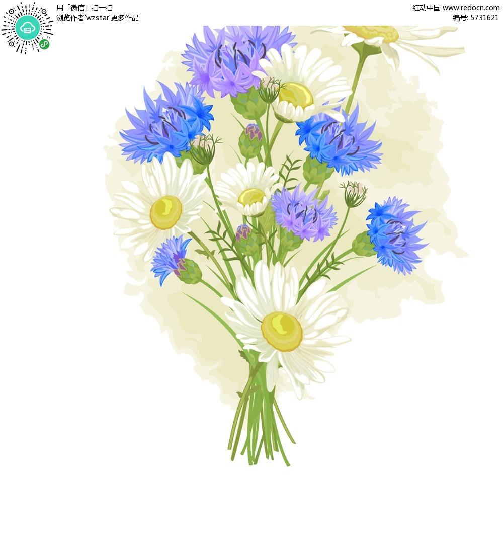 花卉手绘插画