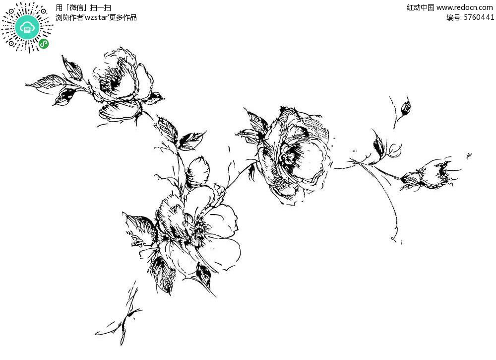 黑白花卉插画设计