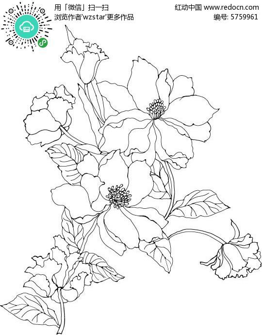 黑白手绘花朵背景素材