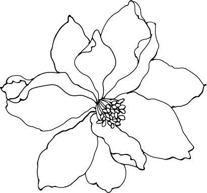 简约手绘花朵插画素材
