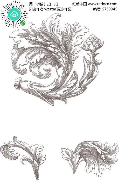 初一手绘学习笔记树叶
