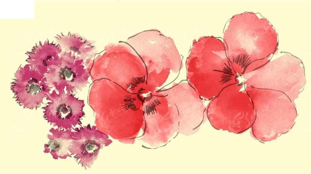唯美彩色手绘鲜花插画素材