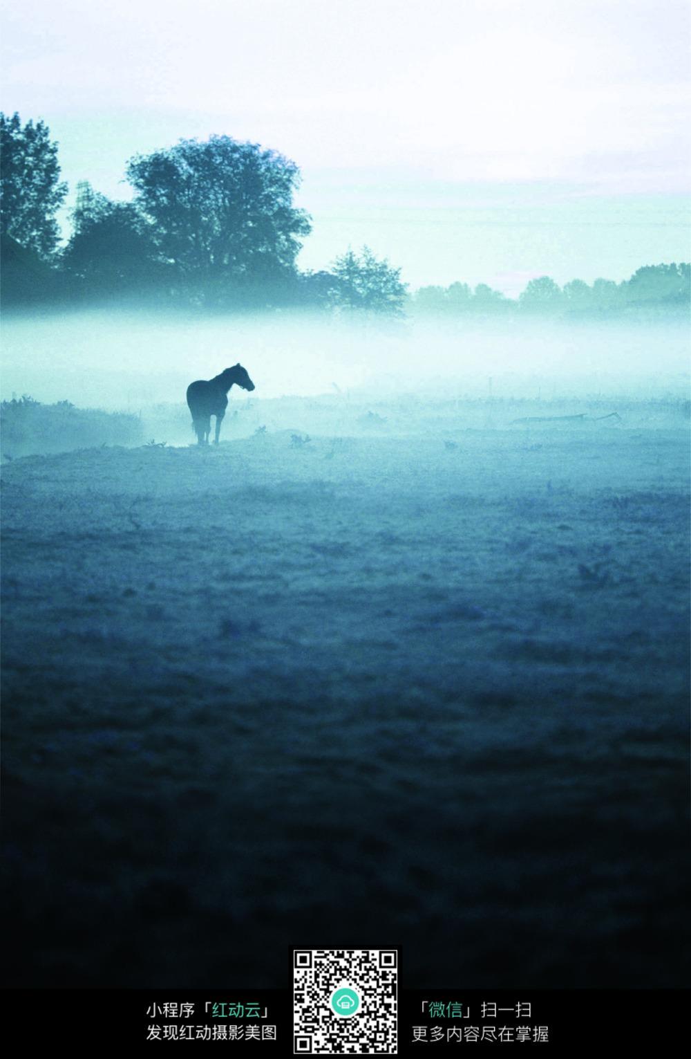 浓雾黑白风景摄影