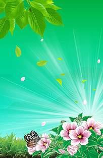 蝴蝶花卉清新背景
