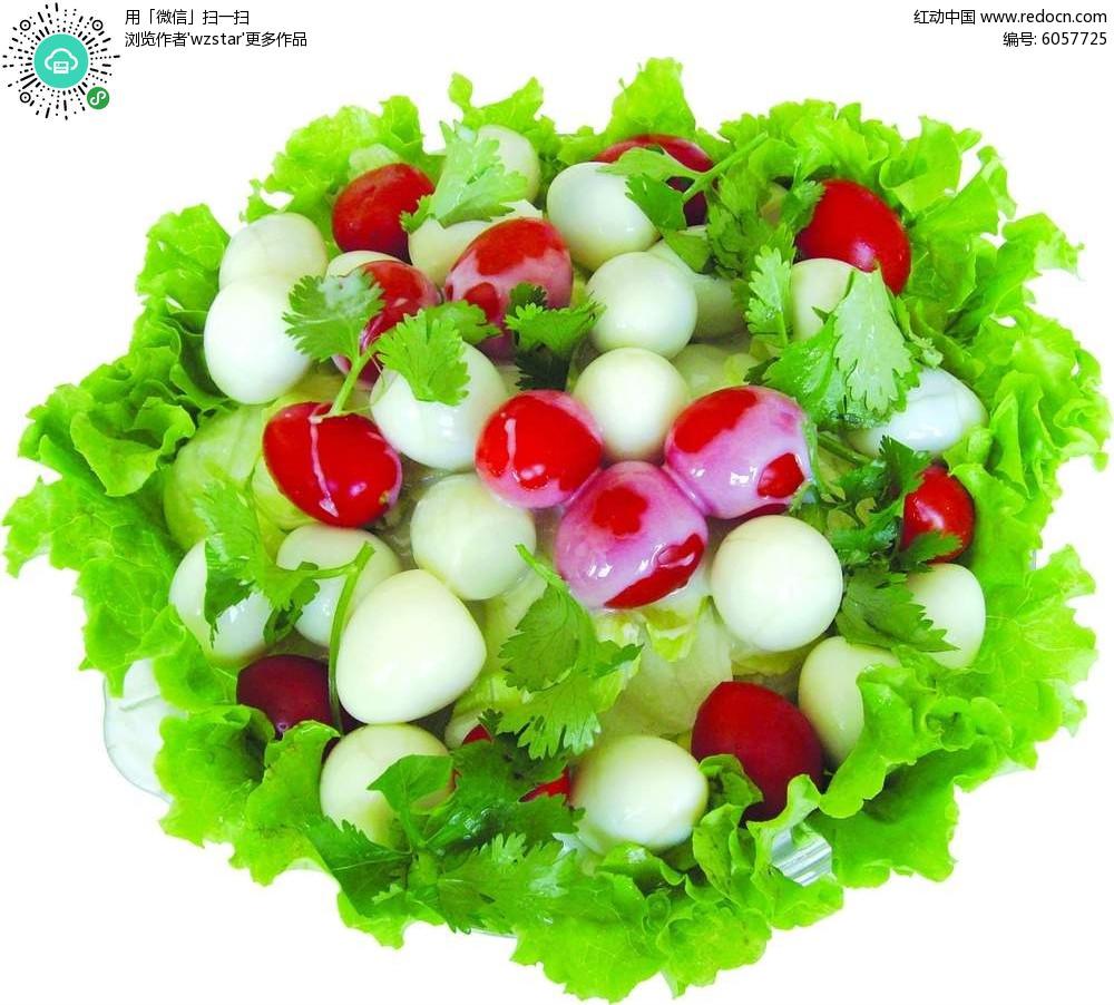 菜谱蛋PSD免费下载_食谱菜单补钙个18鹌鹑月最快素材图片