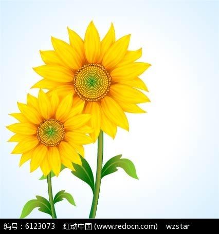 灿烂向日葵手绘素材