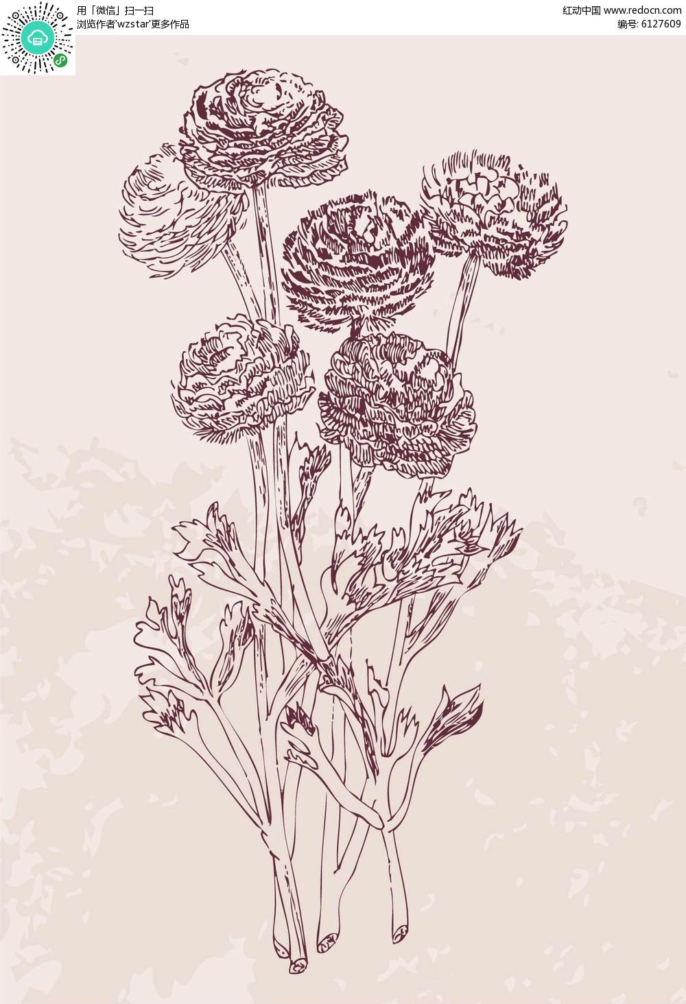 手绘线描花朵素材矢量