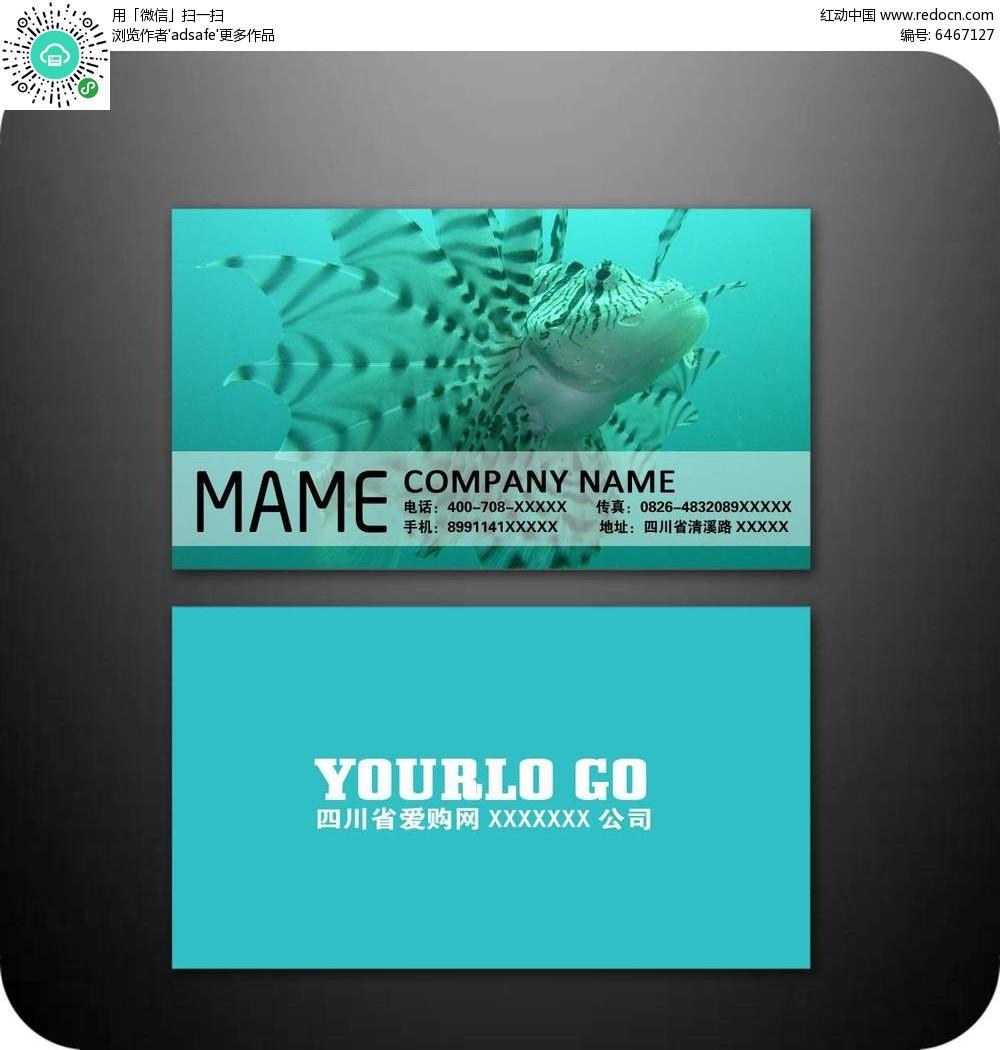 免费素材 psd素材 psd广告设计模板 名片卡片 海洋生物名片模板素材