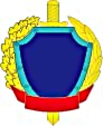 欧式徽章图案