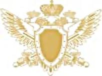 皇冠盾牌鹰徽章