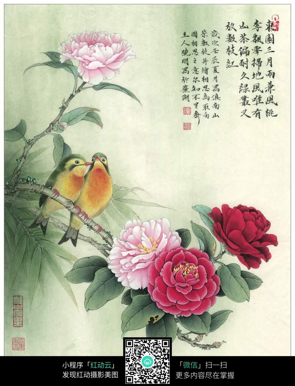 海棠花古风插画图片