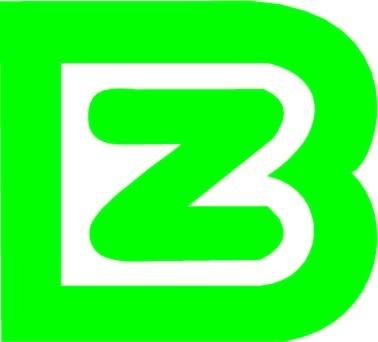 bz英文logo设计图片