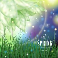 春季梦幻草地