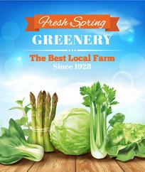 精美绿色蔬菜
